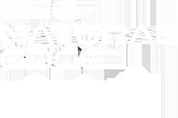TNE academy logo